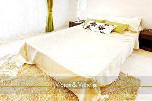 Paris 15 appartement T3 chambre zen vert et blanc king size spacieuse lumineuse appartement agence immobilière Victor & Victoire real estate agency