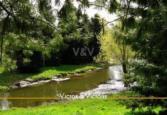 Appartement T3 Nantes Parc de Procé espace de verdure arboré et cours d'eau Agence immobilière Victor & Victoire Real estate agency