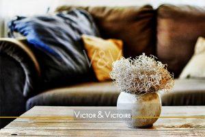 Nantes Universités salon appartement T3 vase terre cuite table basse bois naturel canapé cuir vieilli coussins