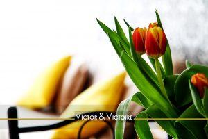 Nantes Centre ville appartement salon appartement bouquet tulipes rouge canapé coussins jaune Victor & Victoire-immobilier-Real estate agency