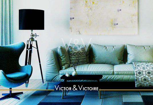 Paris 15ème appartement T2 canapé coussins fauteuil lampe tyableau tapis bleu appartement Victor & Victoire immobilier Real estate agency