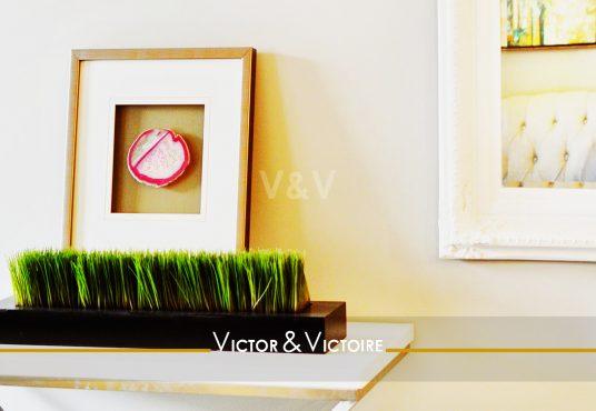 entrée séjour cadre plantes miroir reflet canapé appartement lumineux T2 Paris 18e Agence immobilière Victor & Victoire, Real estate agency.