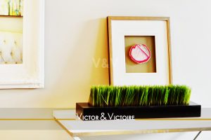entrée desserte cadre miroir plantes vertes vente appartement Paris Agence immobilière Victor & Victoire. Real estate agency